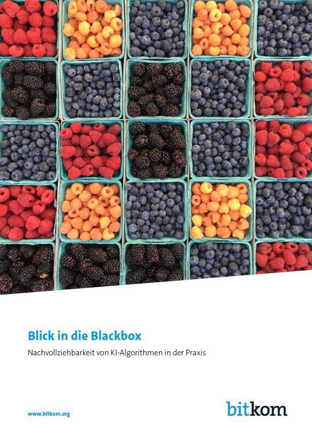 Blick in die Blackbox: Nachvollziehbarkeit von KI-Algorithmen in der Praxis
